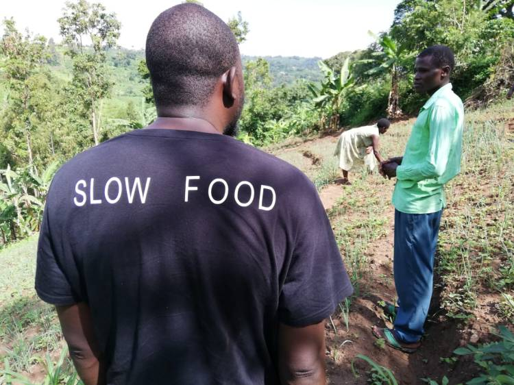 slow food tshirt guy touring Uganda garden